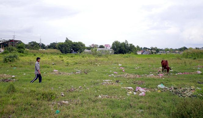 TP.HCM ban hành quy định mới về tách thửa đất