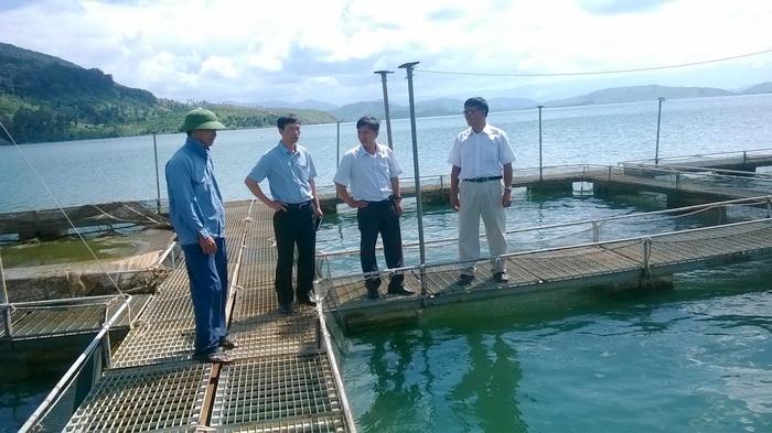 Điều kiện đầu tư kinh doanh dịch vụ khảo nghiệm giống thủy sản