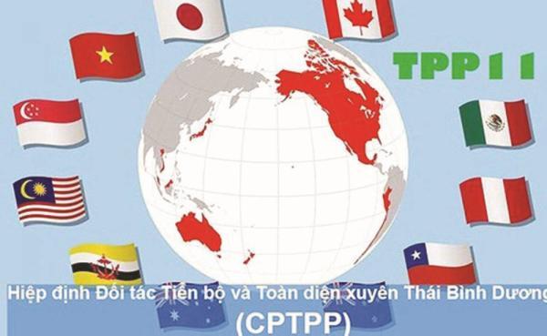 """Liệu CPTPP có thể """"cán đích""""?"""
