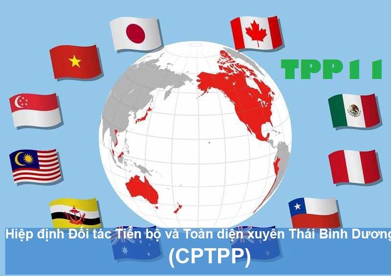 Toàn văn Hiệp định CPTPP (Bản tiếng Việt)