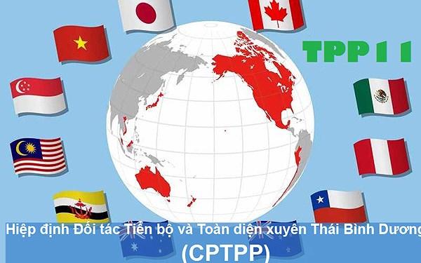 Việt Nam trông đợi gì từ Hiệp định CPTPP?